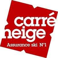 logo-carre-neige-icone-339